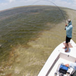 Laguna Madre Saltwater Fishing